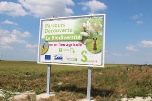 Le Parcours découverte de la biodiversité de Berru est accessible à toute personne intéressée pour mettre en place des aménagements favorables à la biodiversité.