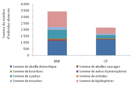 graph_apilluz_result1