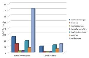Les pollinisateurs sont trois fois plus présents dans la bande non fauchée que dans le reste de la parcelle de luzerne