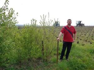 François Louvet a installé un petit bosquet en marge d'une parcelle de vigne.