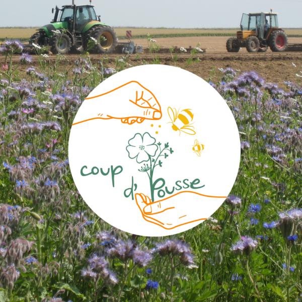 """Donner ou recevez un """"Coup d'Pousse"""" pour les pollinisateurs"""